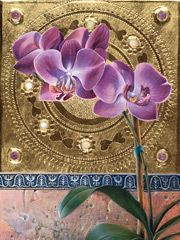 fwessel_venetianiconorchid_thumb